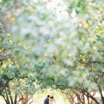 la arboretum wedding photos | grace + richard encore