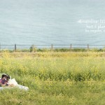 field of flowers engagement photos | hart + plum